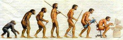 evolucion.jpg